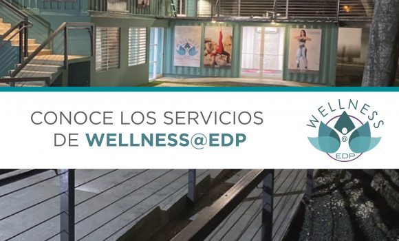 Servicios Wellness@EDP